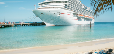 A cruise ship docked at the beach.