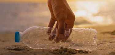A hand picking up a water bottle from the beach.